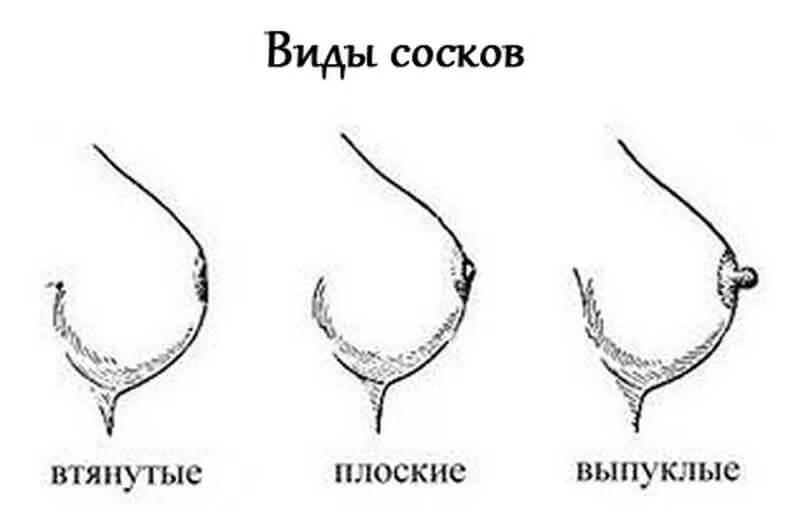 Порно картинки разных форм сосков