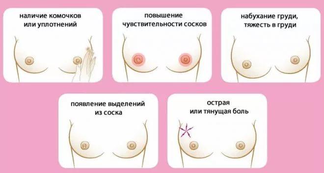 какой промежуток времени нужен для созревания спермы-уы1